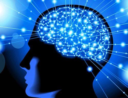 Εκπαίδευση στην Κλινική Νευροψυχολογία – Νευροψυχολογία για επαγγελματίες υγείας