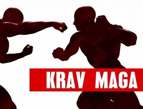 Πιστοποιημένος Εκπαιδευτής Krav maga