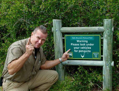 Ειδικός Δασικής Προστασίας